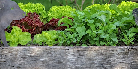 Seasonal Planting for Raised Beds & Benefits of No-Till Gardening tickets