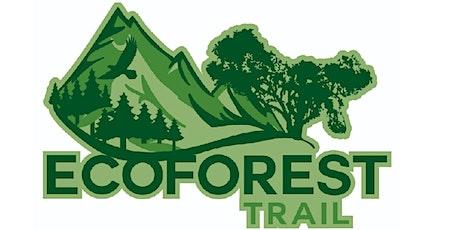 EcoForest Trail desafio La Ernestina entradas