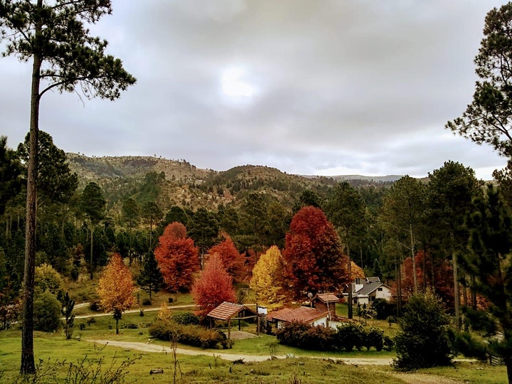 Imagen de EcoForest Trail desafio La Ernestina