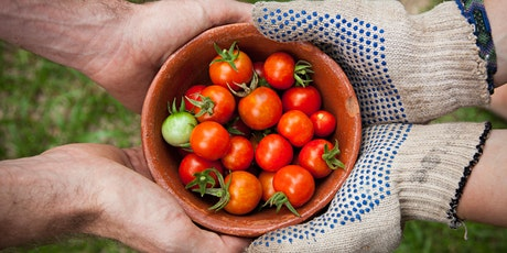 Community Garden Walk & Talk with a Harvest Lunch tickets