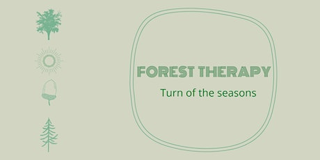 Forest therapy - Turn of the seasons tickets