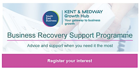 Business Recovery Support Programme Online Workshop tickets