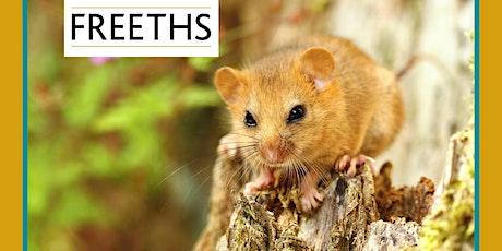Habitats Regulations Assessment: online legal training course tickets