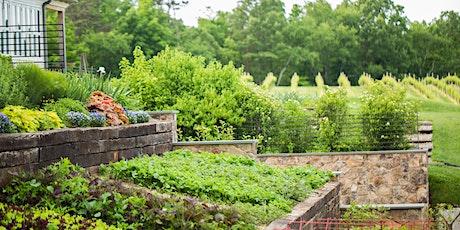 Kitchen Garden & Harvest Dinner tickets