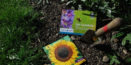 Creating new plants for pollinators tickets