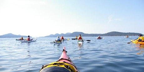 Sea Kayaking with The Shaar tickets