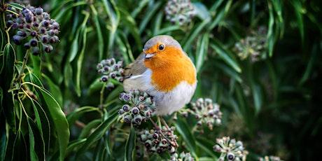 Nurturing Urban Wildlife Habitats on the Isthmus tickets