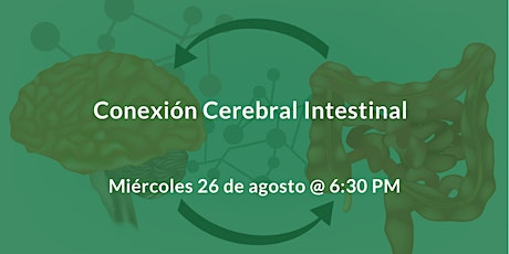 La conexión del cerebro intestinal tickets