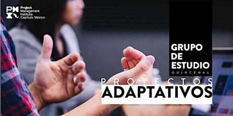Grupo de estudio proyectos adaptativos entradas