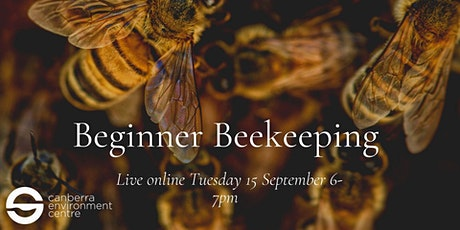 Beginner Beekeeping in Canberra tickets