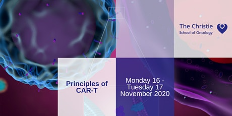 Principles of CAR-T tickets