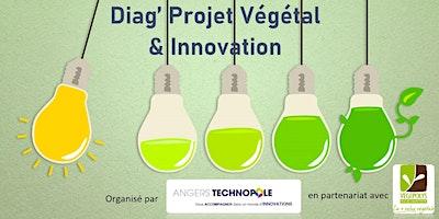 Diag Projet Végétal & Innovation