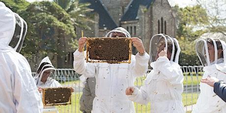 URBAN HUM Backyard Beekeeping Workshop tickets