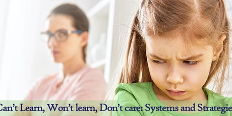 Can't Learn, Won't learn, Don't care: Systems and Strategies tickets