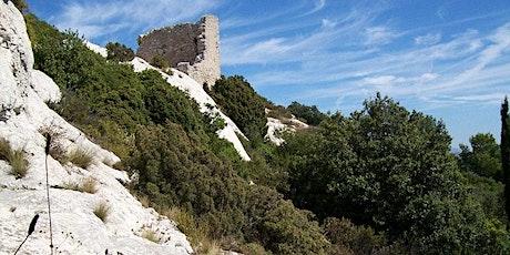 À la découverte des richesses cachées entre Pastré et Montredon billets