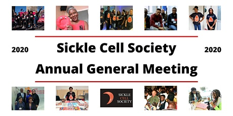 Sickle Cell Society AGM 2020 (Virtual) tickets