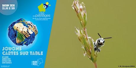 Les abeilles sauvages billets