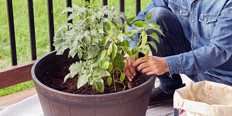 Fall Vegetable Gardening in Containers tickets