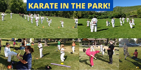 Karate in the Park! tickets