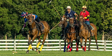 Pony Up Polo Classic: Benefiting Great and Small tickets