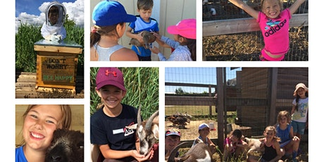 Freedom Farm Day Camp - Day 2 Aug.11,2020 tickets