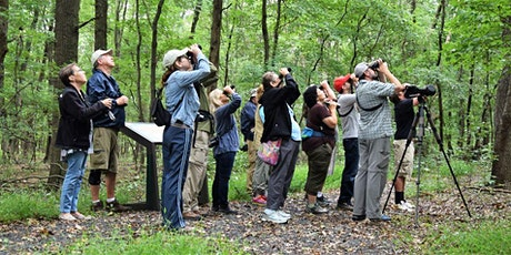 Looking for Late Migrants at Hawk Rise - with Scott Barnes tickets