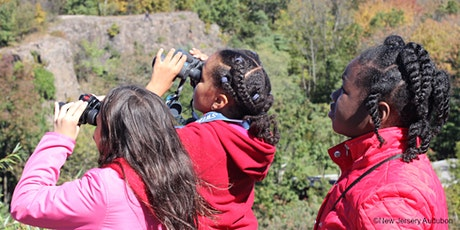 Youth Birding on Petty's Island with NJ Young Birder's Club tickets