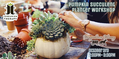 SOLD OUT: Pumpkin Succulent Workshop at Wagonhouse Winery tickets