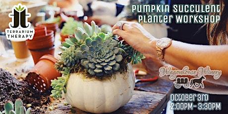Pumpkin Succulent Workshop at Wagonhouse Winery tickets