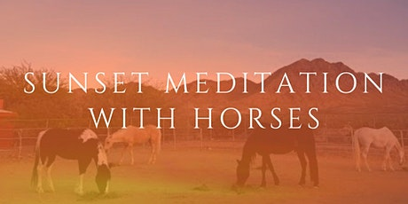 Sunset Meditation With Horses tickets