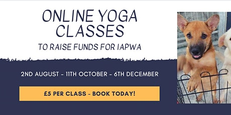Online Yoga Class with Mark Lee Davies on behalf of IAPWA tickets