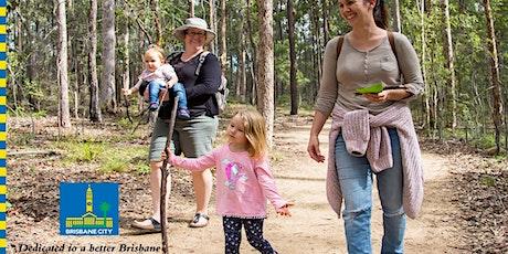 Bush Kindy – Guided Walk in Karawatha tickets