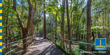 Bush Kindy – Forest Therapy walk for kids tickets