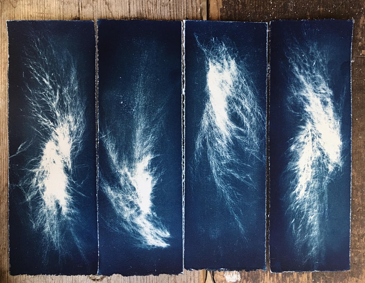 Printing with the Sun - Cyanotype Workshop image