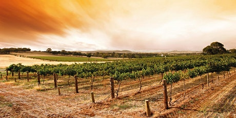 Barossa Stakeholder information session and morning tea tickets