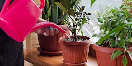 Eden TV Get Spring Ready - Indoor Plants tickets