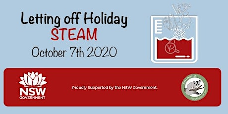 Letting off Holiday STEAM tickets