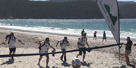 Tasmanian Iconic Walk 2020    Stroke Foundation Fundraising Walk tickets