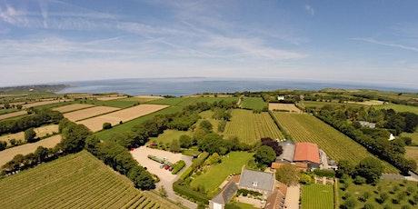 La Mare Wine Estate & Distillery Experience Tour tickets
