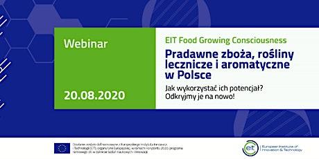 Pradawne zboża, zioła lecznicze i aromatyczne w Polsce. Odkryjmy je na nowo tickets