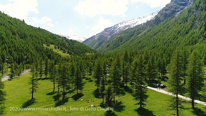 Immagine Photohike in Valle Argentera