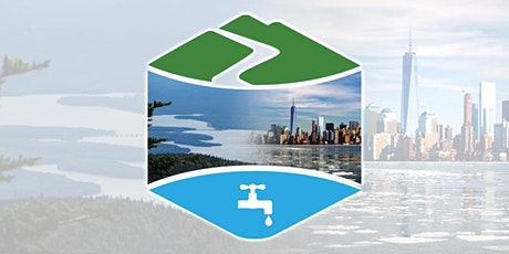 Review of the New York City Watershed Protection Program tickets