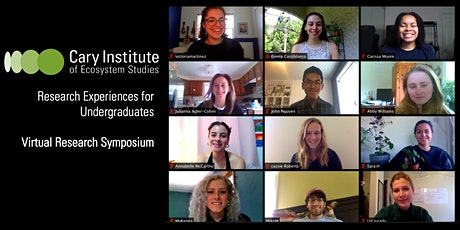 REU Symposium: Summer Research in Focus tickets