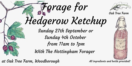 Forage for Hedgerow Ketchup tickets