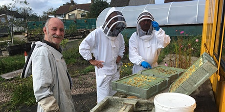 Bee Workshop. Learn about the fascinating world of beekeeping. tickets