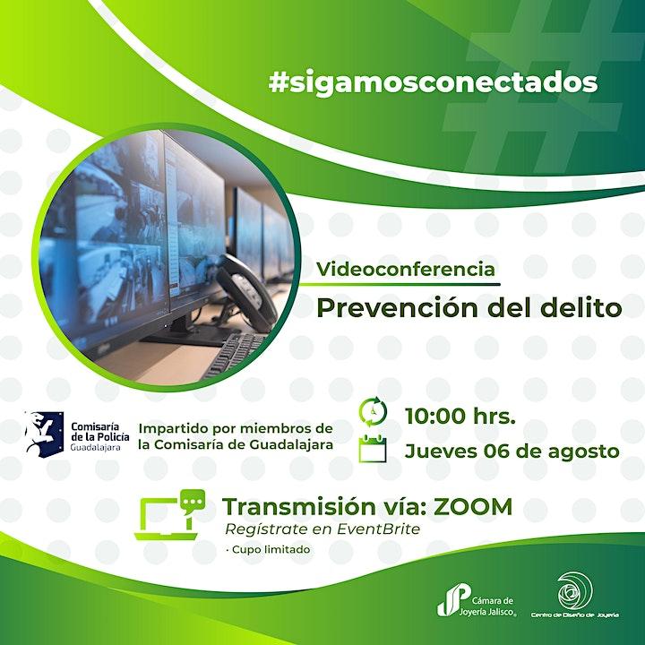 Imagen de Videoconferencia: Prevención del Delito