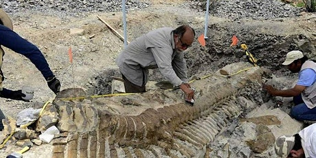 History of Dinosaur Discoveries Zoom Home School Class