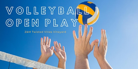 Volleyball Open Play tickets