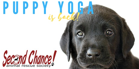 August 8th Puppy Yoga - Session 2 tickets