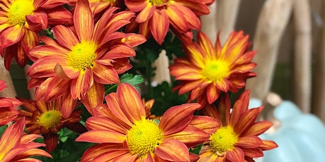 Discover Chrysanthemums tickets